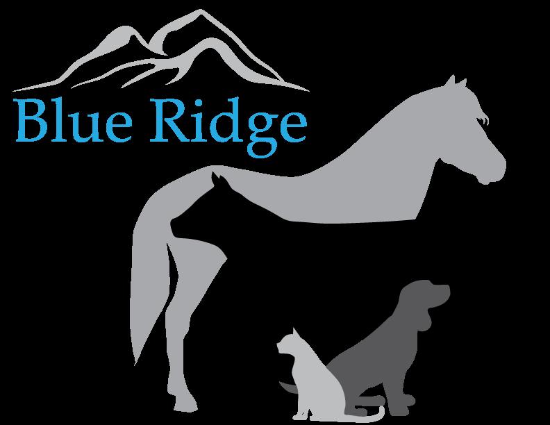 blue ridge animal clinic veterinarians in lexington, va home